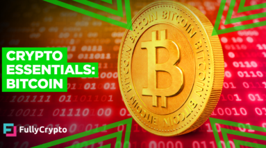 Crypto Essentials: An Overview of Bitcoin
