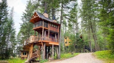 The 18 coolest tree-house rentals in the US, including a vineyard perch in California and a three-story cabin in Georgia
