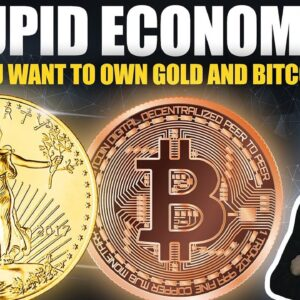 Stupid Economics - Why You Should Own Gold & Bitcoin NOW (not later)