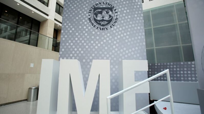 Exclusive: World Bank, IMF eye ways to link debt relief to climate change spending